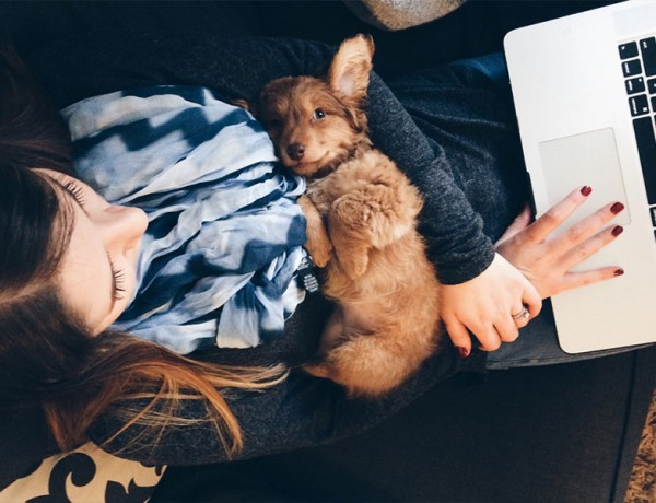 A woman writing an online dating profile with a puppy on her lap.