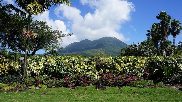 Nevis- Credit Travelingpanties