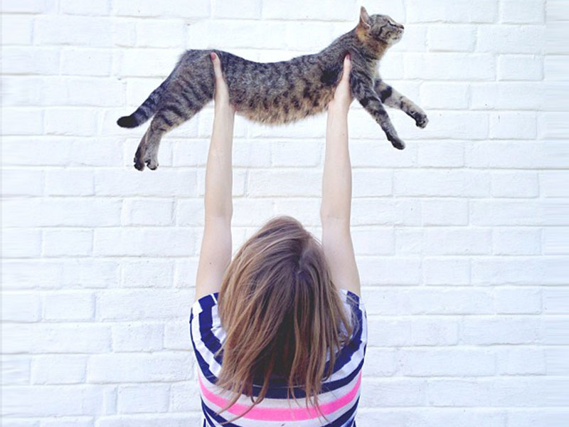 A woman enjoying the single life with her cat.
