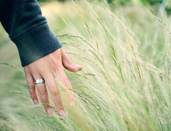 A woman ending a serious relationship running her hand through a wheat field.