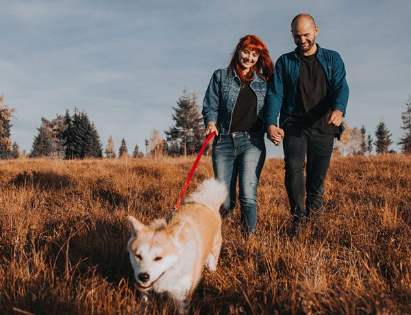 A couple moving on after a divorce walking their dog in a field and laughing.
