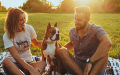 A couple following these first date rules while sitting with a dog on a blanket at the park.