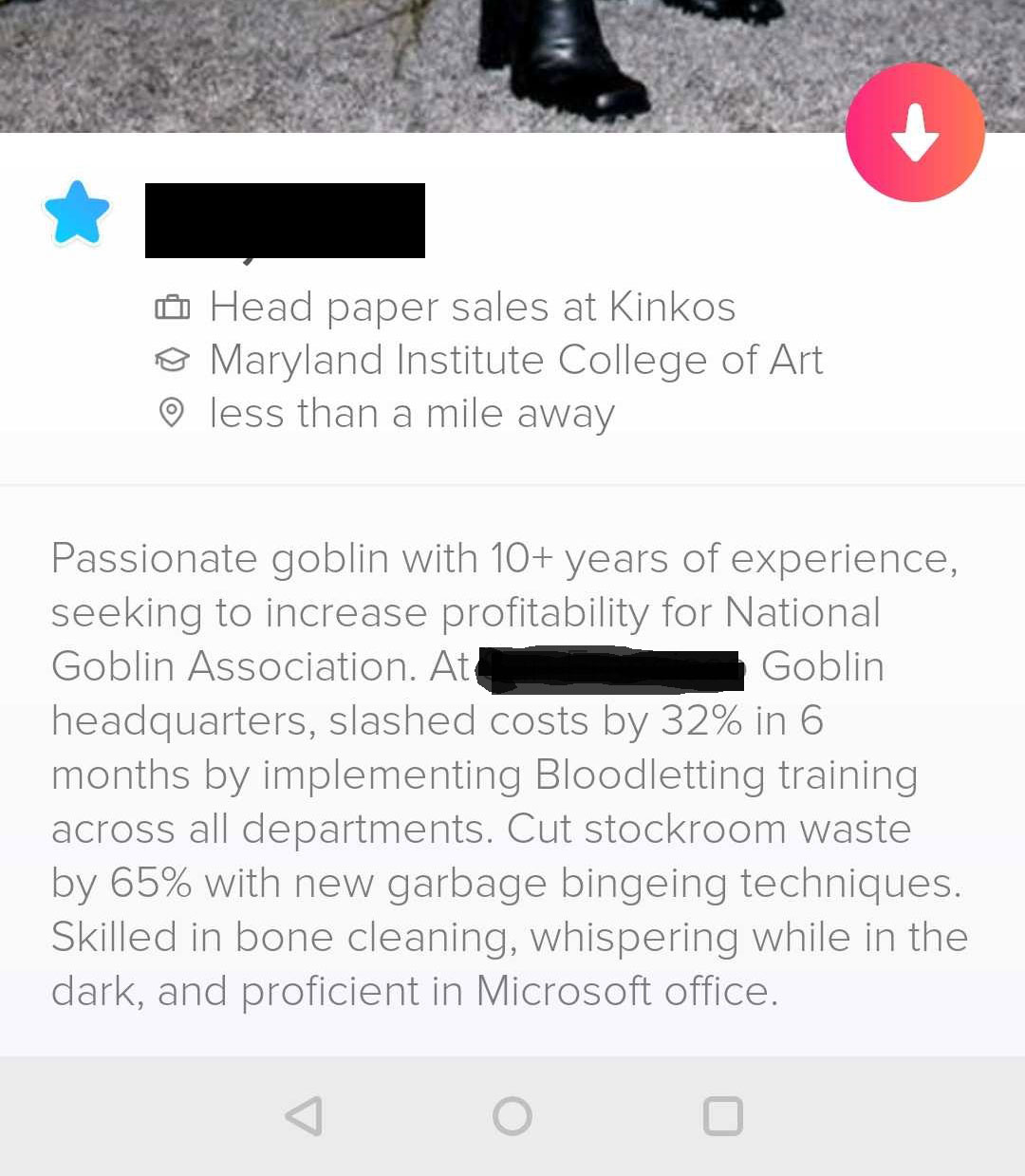 A screenshot of the funny dating profile below.