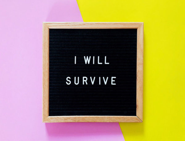 A board with one of these broken heart quotes written on it. I will survive.
