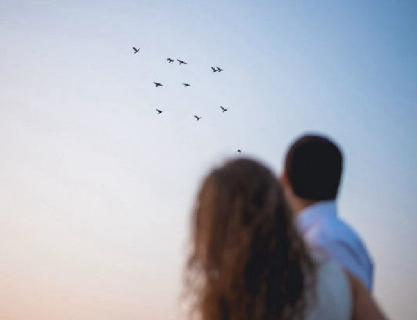Two couples who have there reasons for getting a divorce, watching birds fly away together.